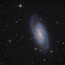 NGC 2903 – A Barred Spiral Galaxy,                                KuriousGeorge
