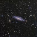 NGC4236,                                GUEYRAUD Stéphane
