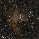 The Pacman Nebula,                                Don Walters