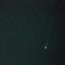 Cometa Lovejoy,                                Vega