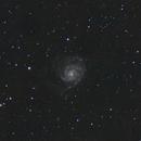 Pinwheel Galaxy,                                David Conn