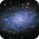 M33 Triangulum Galaxy (first light),                                Giosi Amante