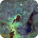 IC1396 The Elephant Trunk Nebula,                                Peter Webster