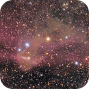The Gecko Nebula - LBN 437,                                Gabe Shaughnessy