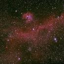 IC2117,                                wei-hann-Lee