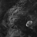 NGC 6888 - Crescent Nebula - Jul 2021 - Ha BW,                                Martin Junius