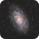 Messier 33  Dreiecksgalaxie,                                Zieserl Franz