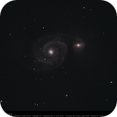 M51,                                CHERUBINO