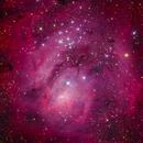 Lagoon Nebula,                                GoldfieldAstro