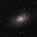 Messier 33,                                Dominik Ball