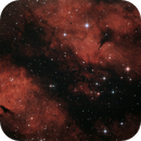 IC1318 - Butterfly Nebula,                                BrunoD