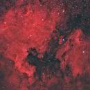 NGC 7000 -- North America and Pelican Nebulae (RGB),                                Wayne Jaeschke