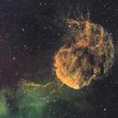 The Jellyfish in the Sky,                                Arun H.