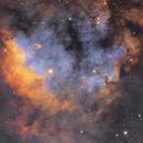 NGC 7822,                                Dawn Lowry
