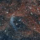 Wolf-Rayet 134 Ring Nebula,                                Ivaylo Stoynov
