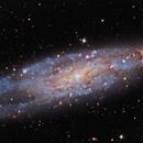 The Needle's Eye Galaxy,                                Warren A. Keller