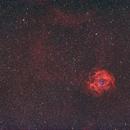 NGC 2237 - Widefield Rosetten Nebel (135 mm),                                Wolfgang Zimmermann