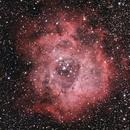NGC 2244 Rosette Nebula,                                Michael Timm