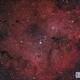 IC 1396 RGB,                                Chris R White