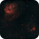 IC 410 Tadpoles,                                Vijay Vaidyanathan
