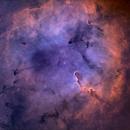 Elephant Tusk nebula,                                Wei Li