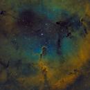 IC 1396 - Elephant's Trunk Nebula,                                Fabian Rodriguez Frustaglia