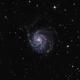 M101 - Galaxie du Moulinet,                                Benjamin
