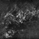 The Cygnus region under a full Moon,                                Michele Vonci