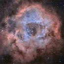 Rosette Nebula,                                erq1