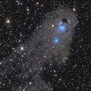 NGC 5367 - CG12 cometary globule,                                Patrick Dufour
