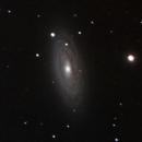 NGC 2841,                                jeff