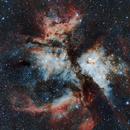 NGC 3372 Carina Nebula,                                Laurence Pap