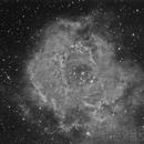 Rosette Nebula,                                alexastro