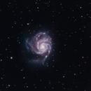 M101 Zenithstar 61,                                Valentin Bona