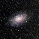 M33,                                Paolo Manicardi