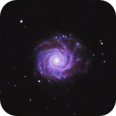 NGC 3938,                                Kyle Butler