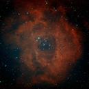 Rosette Nebula HGB,                                Dave Bloomsness