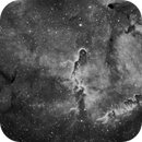 SRO  IC1396 - Elephant Trunk Nebula,                                jerryyyyy