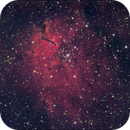 NGC 6820 and Sh 2-86 (reflection and emission nebulae with narrowband SHO),                                Nikola Nikolov