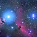Horsehead Nebula,                                gturgeon