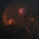 Flaming Star Region,                                AstroMichael