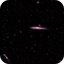 NGC4631(Whale Galaxy),                                simon harding