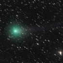 cometa C/2013 R1 Lovejoy,                                Rolando Ligustri