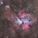 Eta Carinae Nebula,                                Philip Herbst