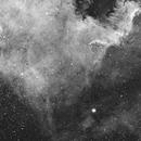 NGC7000 HA ,                                Stéphan & Fils