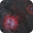 IC1396 and Sh2-129 with Ou4,                                Marukawa