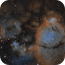 NGC896 Fish Head Nebula in Narrowband Hubble Palette,                                Kayron Mercieca