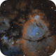 NGC896 Fish Head Nebula in Narrowband Hubble Palette,                                Kayron Mercieca