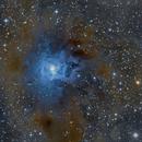 NGC 7023,                                Dave & telescope