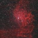 IC 405 Flaming Star Nebula #2,                                Molly Wakeling